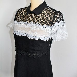Chicwish Black Embroidered with collar Dress SZ S